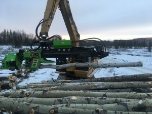 the treeking forestry attachment